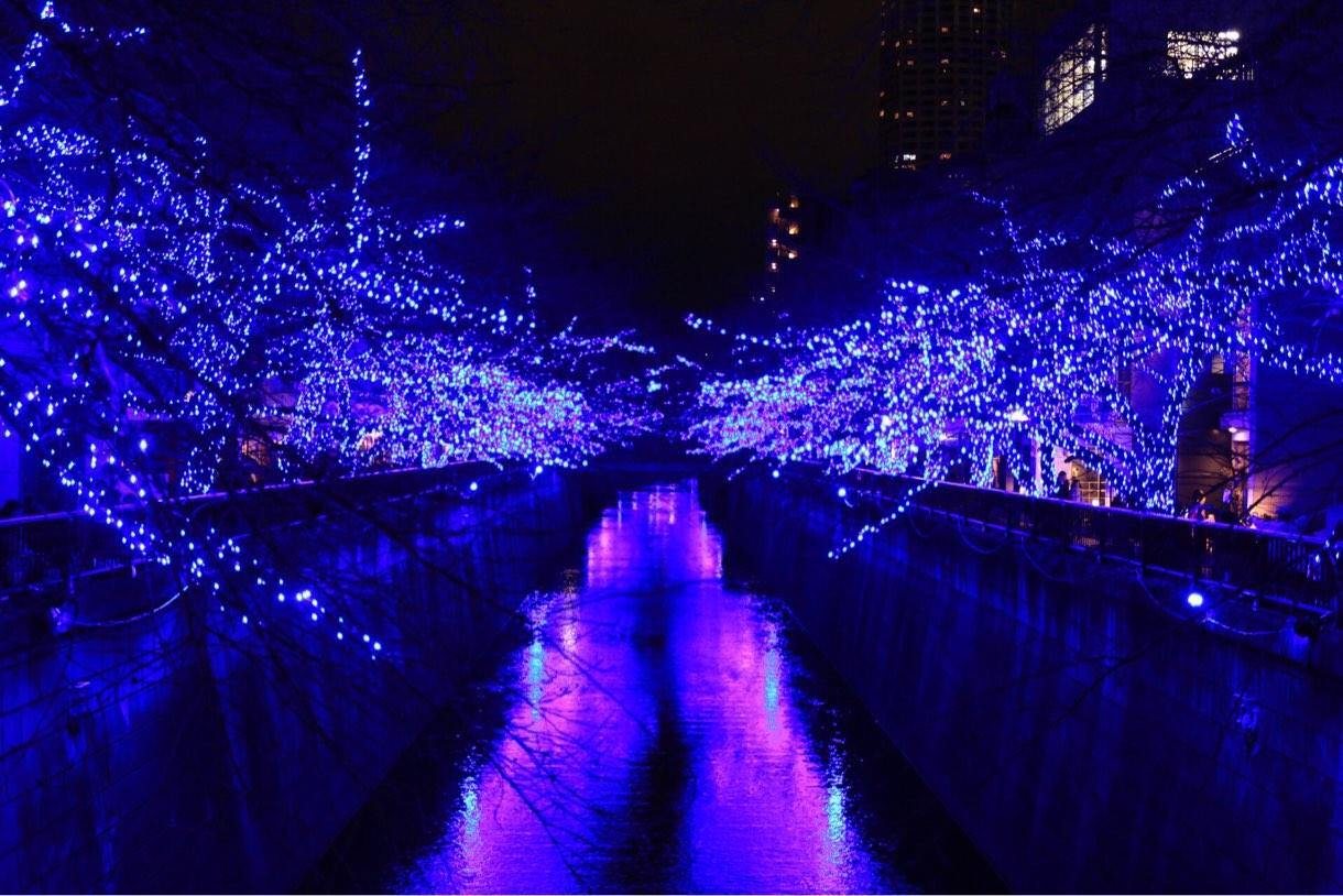 [Å] 綺麗すぎ!中目黒「青の洞窟」で青に包まれる幻想的イルミネーション撮影してきた!