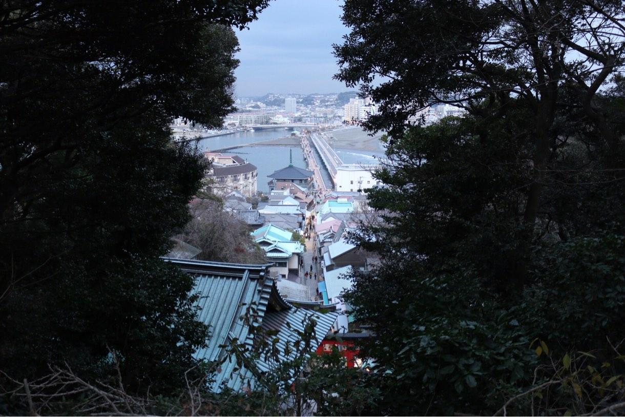 隙間から見える江ノ島