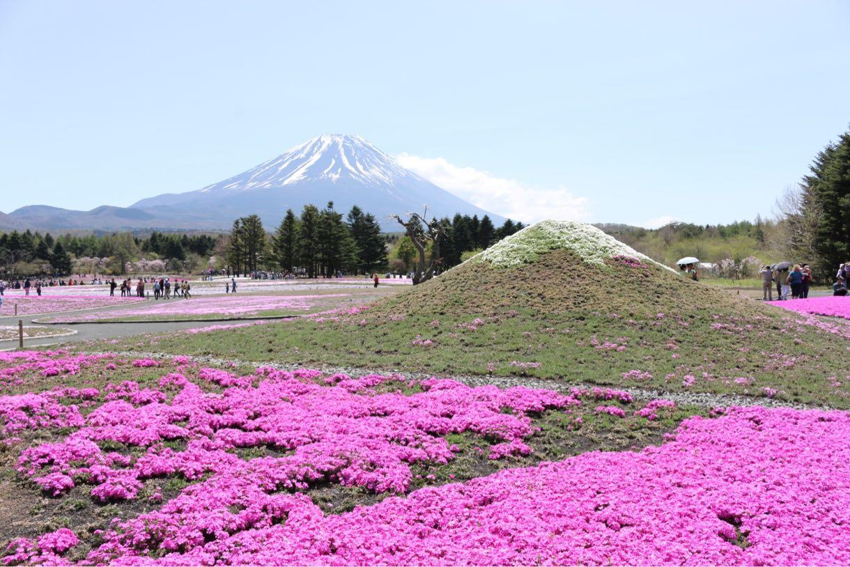 ダブル富士山