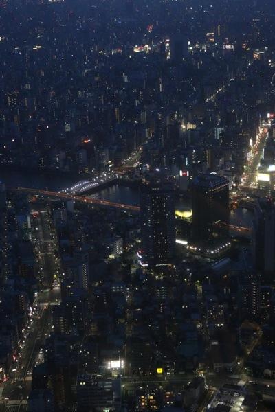 スカイツリーから見える大都会の夜景