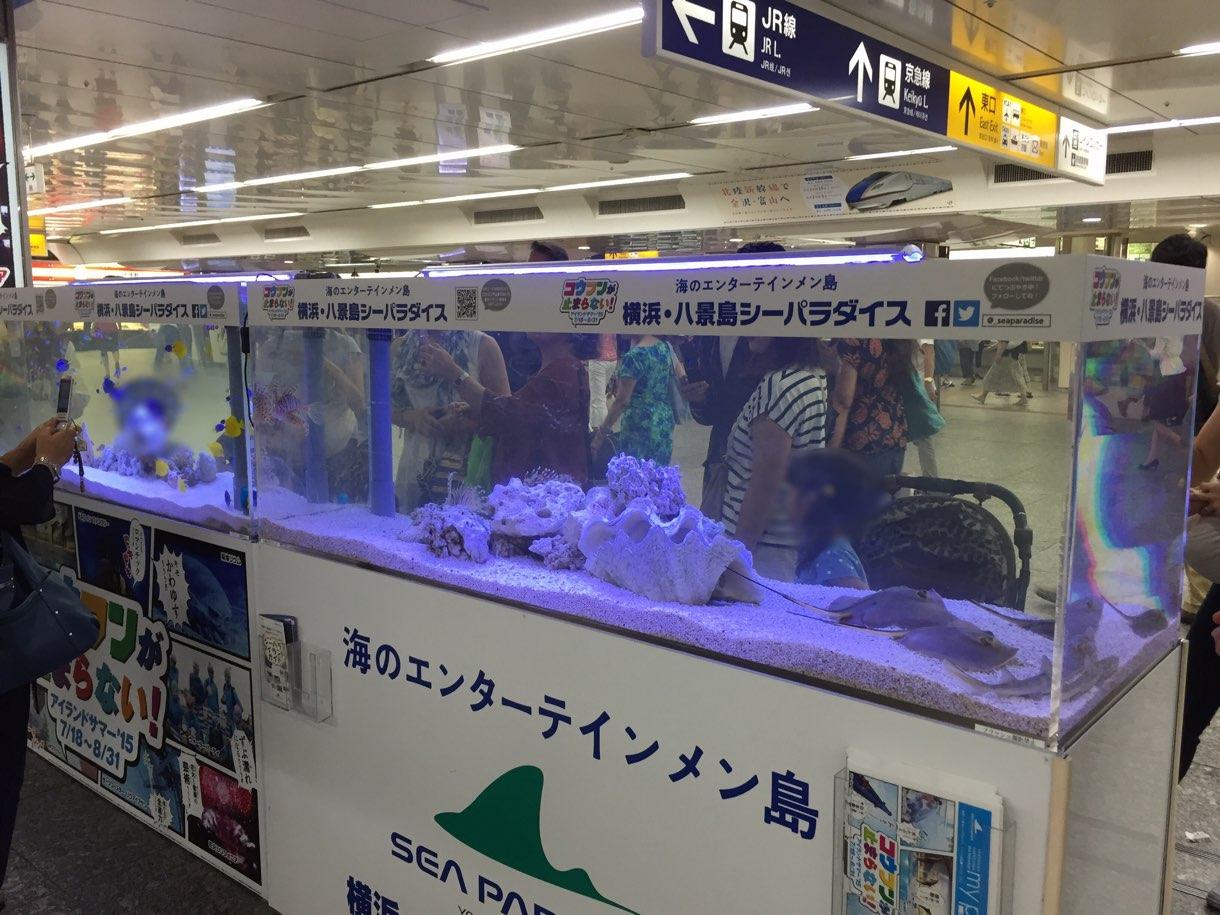 横浜駅の横浜・八景島シーパラダイスの水槽
