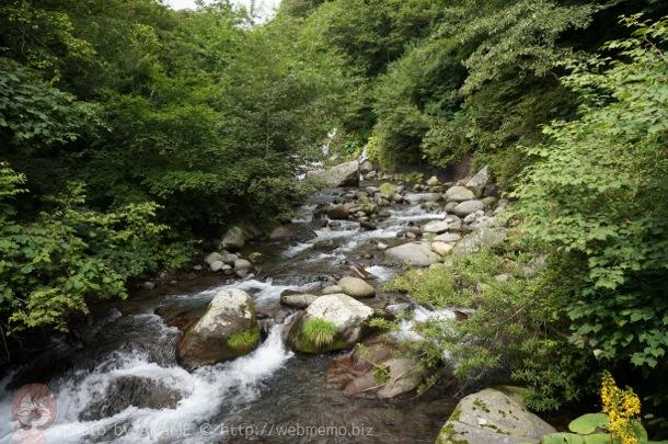 吐竜の滝 道中の川