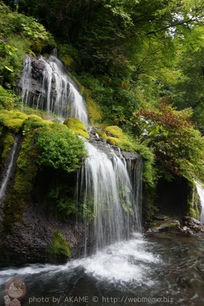 吐竜の滝 縦の写真