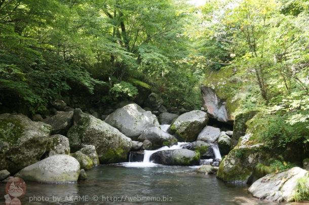 吐竜の滝 近くの清流