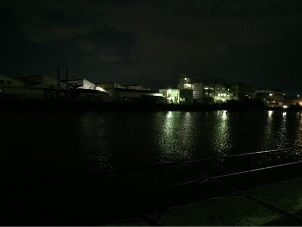 夜の野島公園