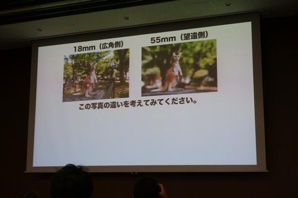 望遠写真と広角写真の比較