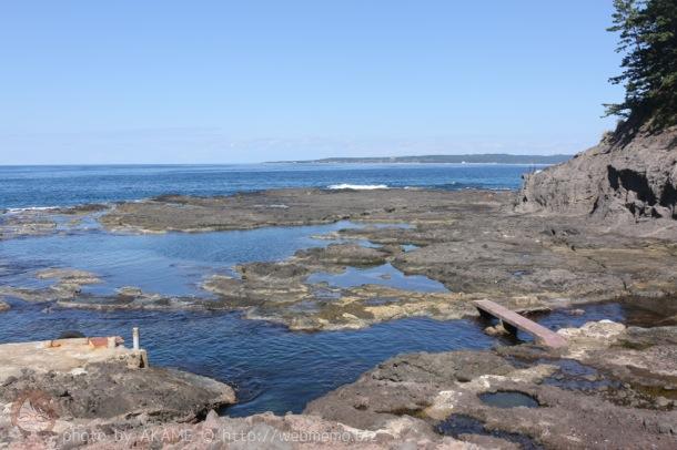 巌門遊覧船乗り場 周辺の海の様子