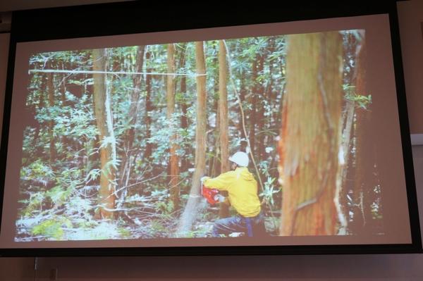 木の間伐は手作業