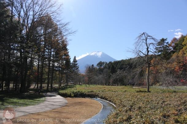 富士山を眺められる日本庭園