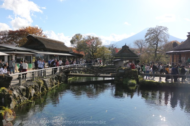 日本名水百選池と世界遺産富士山のコラボ