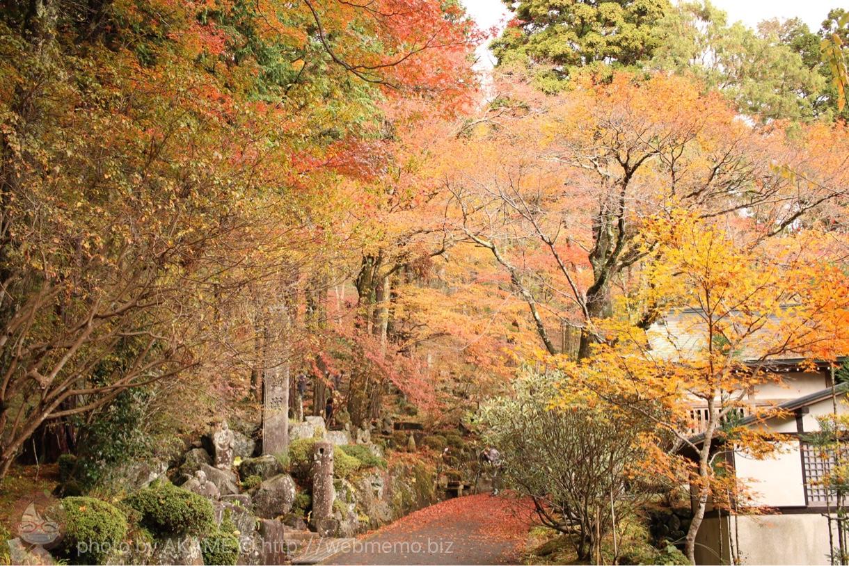 箱根の紅葉名所「長安寺」の紅葉散策