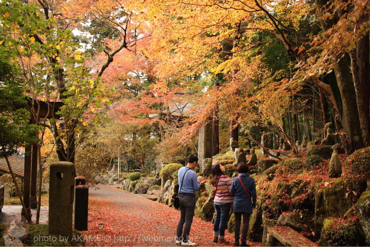 紅葉を楽しむ人々
