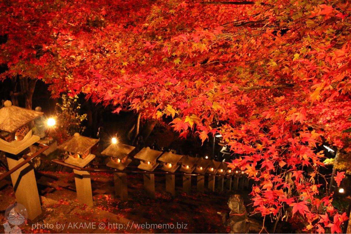 階段とライトアップ紅葉