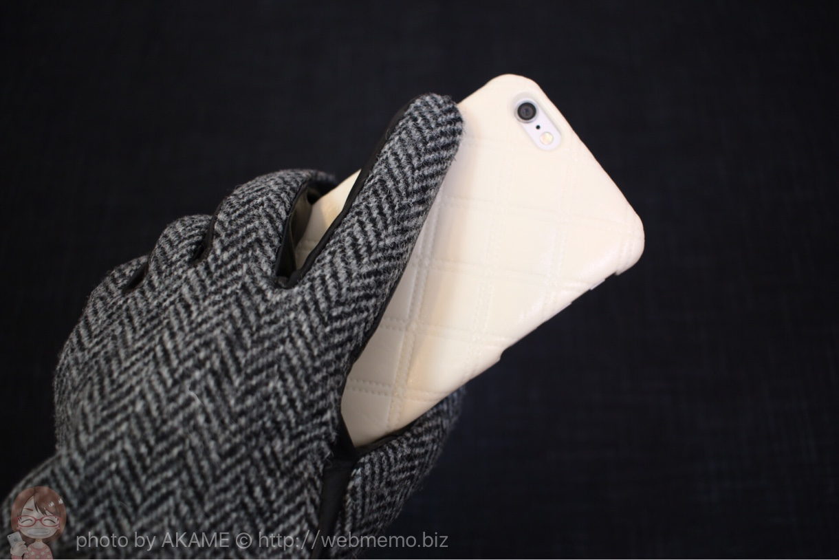 Touch Glove for Smartphone を持った様子