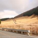 [Å] 箱根の紅葉に行くなら見たい「仙石原」の黄金のススキ草原!