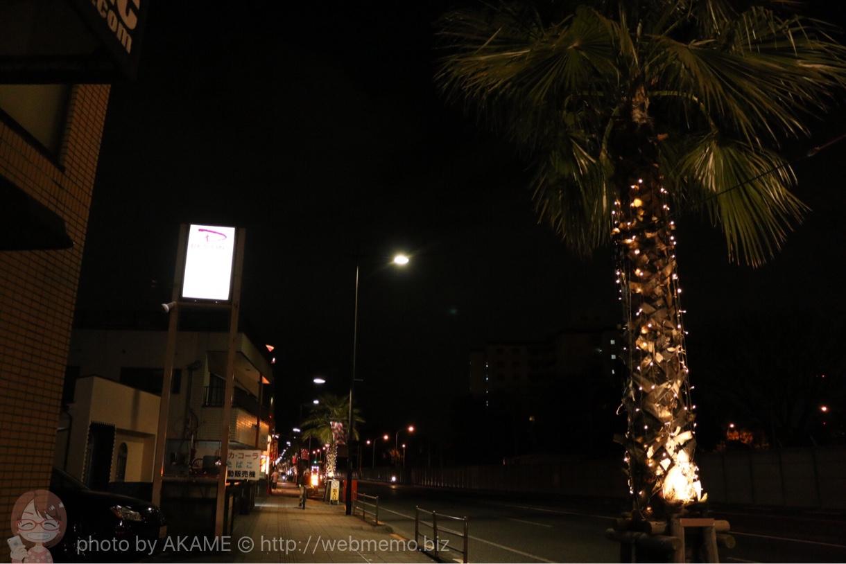 福生駅 国道16号線の昼間とは全然違う夜の商店街の様子 03