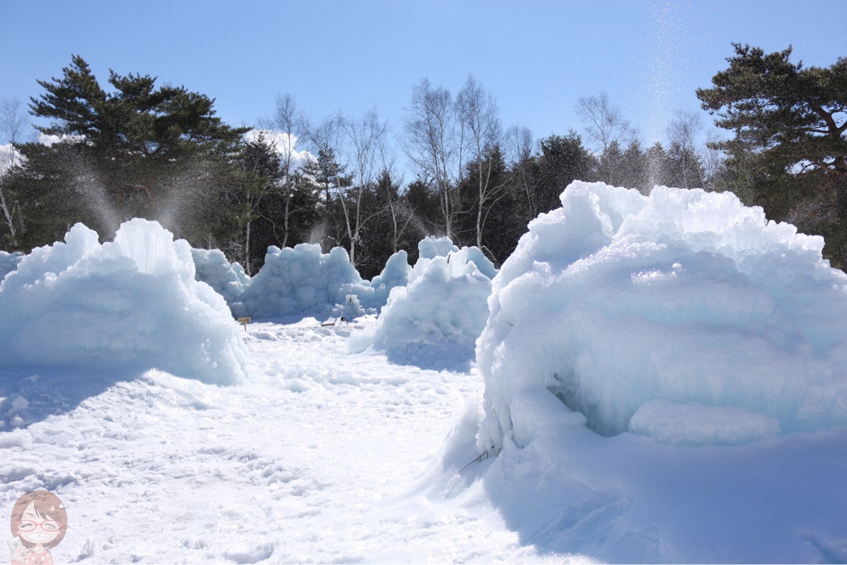 間近で見られる樹氷