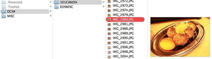 カード内に入っていたこちらのIMG_2980.jpgの月見つくねの写真を削除