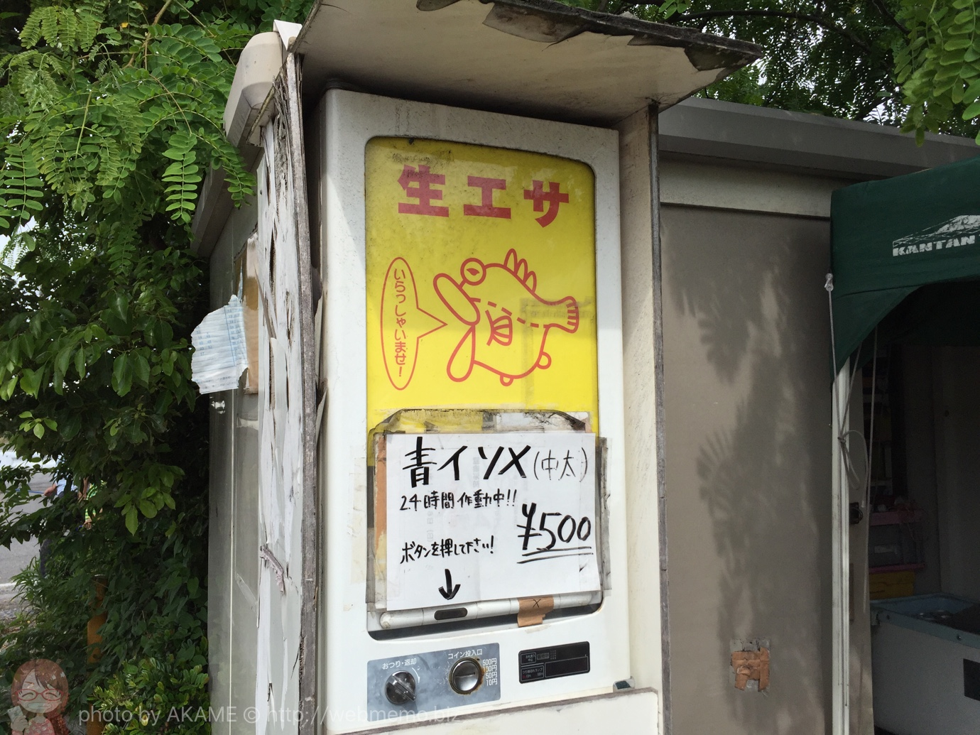 東扇島西公園の駐車場・トイレ・餌情報