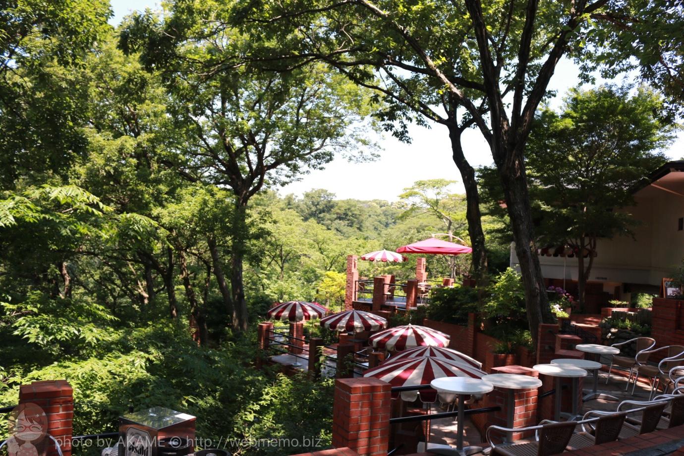 樹ガーデン テラス席
