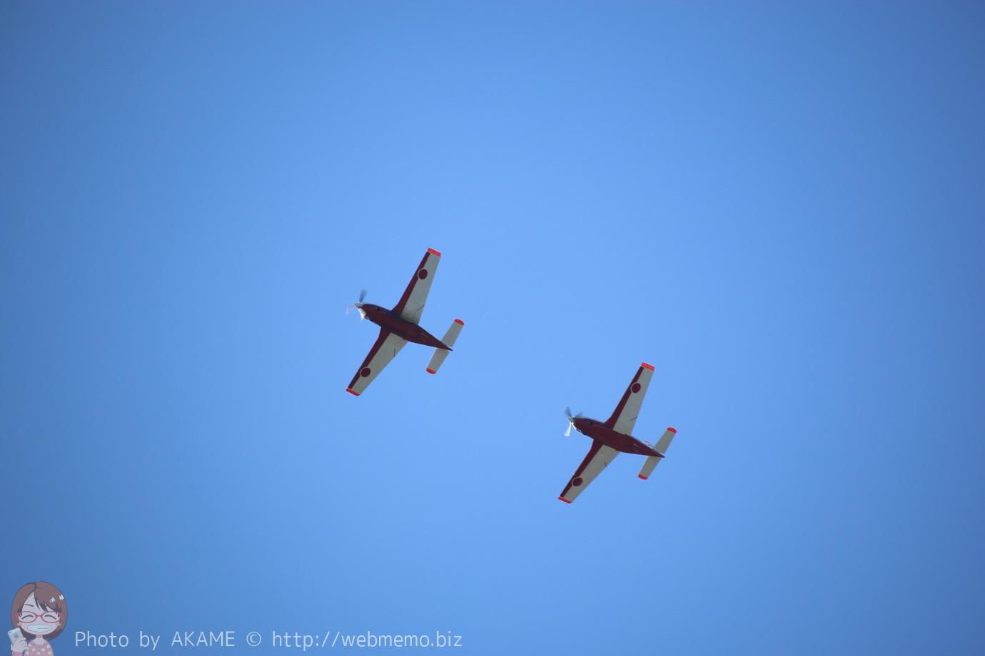 T-7(機動飛行)の展示飛行の様子
