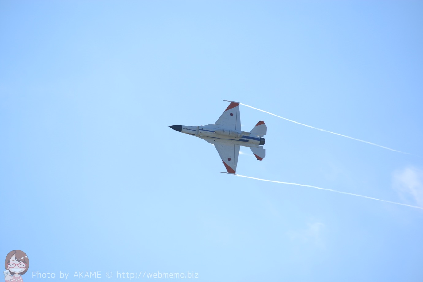 F2(機動飛行)の展示飛行の様子