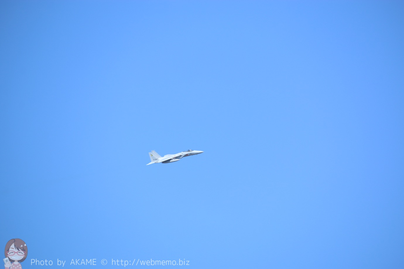 F-15J(機動飛行)の展示飛行の様子