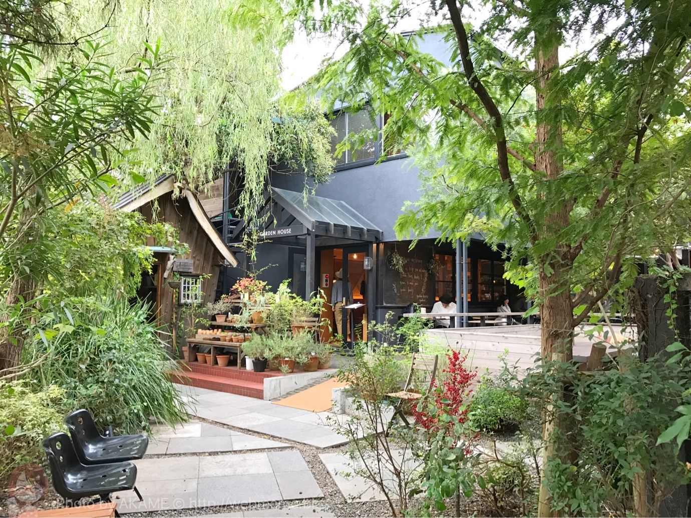 鎌倉の隠れカフェ「ガーデンハウス」のお洒落さに感動!木々に囲まれた雰囲気も素敵