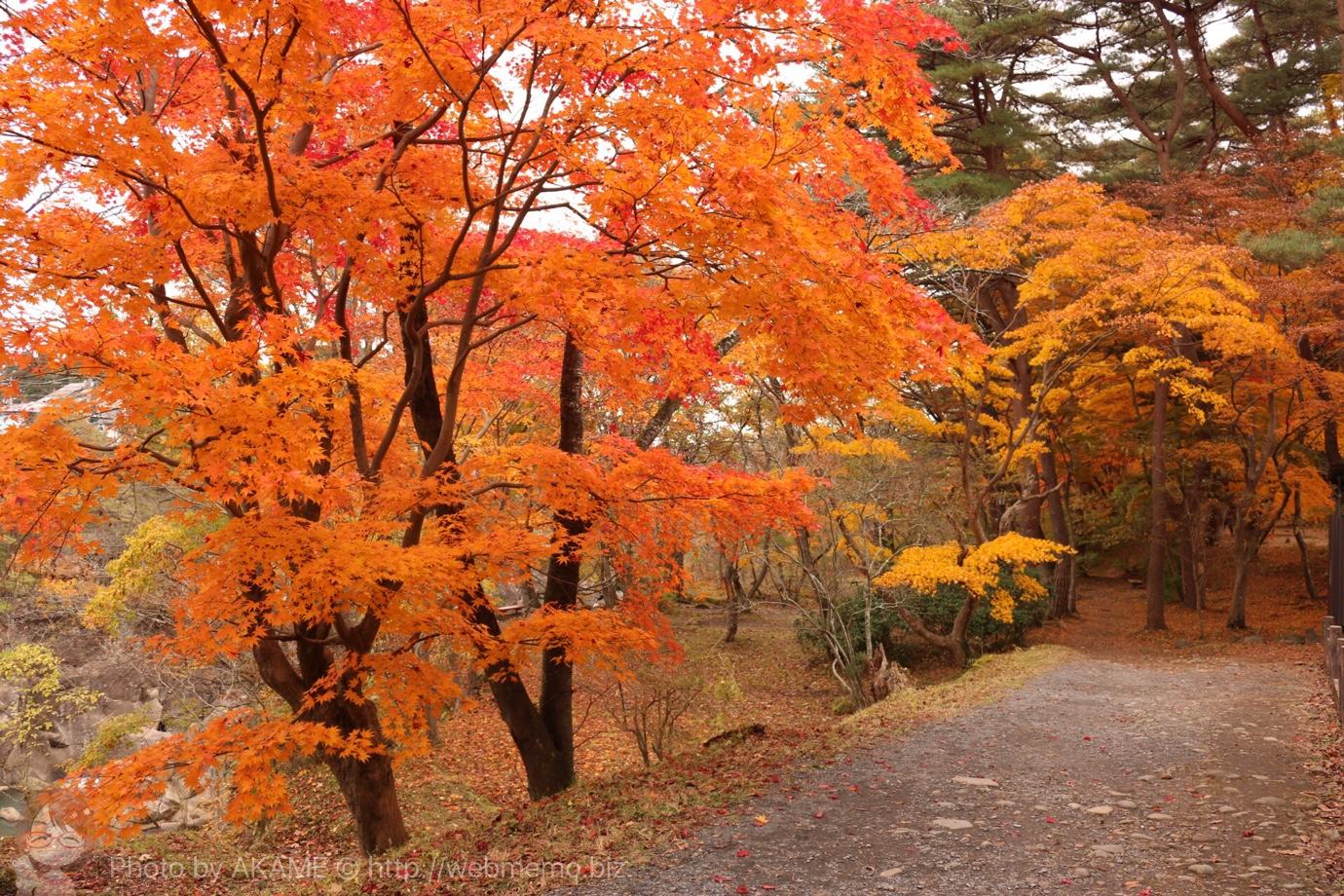 厳美渓周辺で紅葉狩り