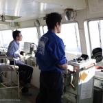 [Å] 東京湾フェリーは千葉県南房総に車なしで行ける!絶景を眺める船旅がやっぱり楽しい