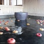 [Å] りんごが浮く不思議な温泉!島崎藤村ゆかりの宿「中棚荘」に宿泊(長野県・小諸)