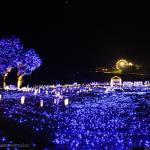 [Å] 千葉県「マザー牧場」のイルミネーションを見てきた!食べ放題とセットの入場チケットがお得