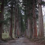 [Å] 長野観光「戸隠神社」奥社までの全1.5キロをレポート!荘厳な杉並木からパワー充電