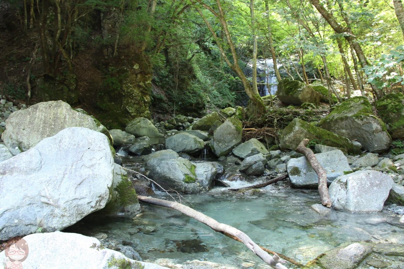 神奈川県 丹沢の秘境「大滝」をハイキング!驚愕の透明度を体験できる超穴場スポット
