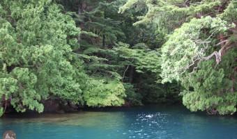 青森県 グリランド体験談 十和田湖・特別保護区で見た秘境とエメラルドグリーンの湖