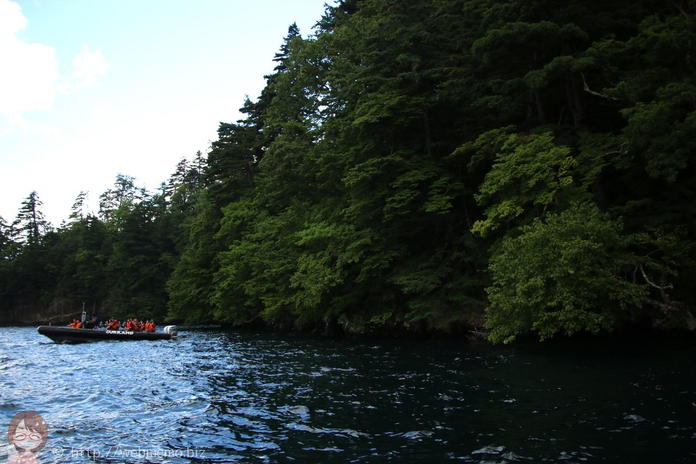 原生林に近づくボート
