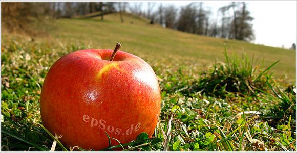 [Å]  風邪にはリンゴ?私にとっての特効薬はこれ!