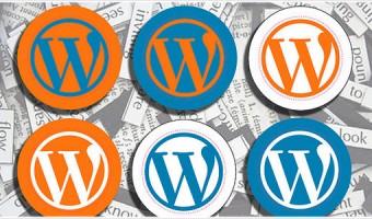 [Å] 【WP】バックアップ必須!データ飛ばしたけど「Wordpress Backup」使って数分で復旧