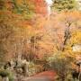 [Å] 箱根の紅葉名所「長安寺」の紅葉散策が楽しい!芦ノ湖とセットがおすすめ